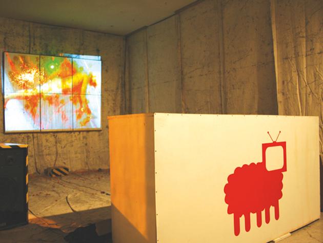 video-paintball